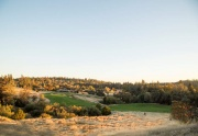 Network Real Estate - Meadow Vista 2 (Custom)