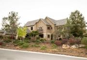 Network Real Estate - Meadow Vista 3 (Custom)