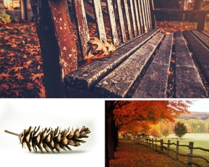 Selling your home fall photo